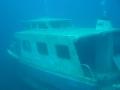 Eperlan onderwater.
